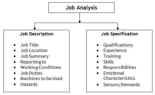The Difference: Job Description Vs Job Specification Vs Job Analysis