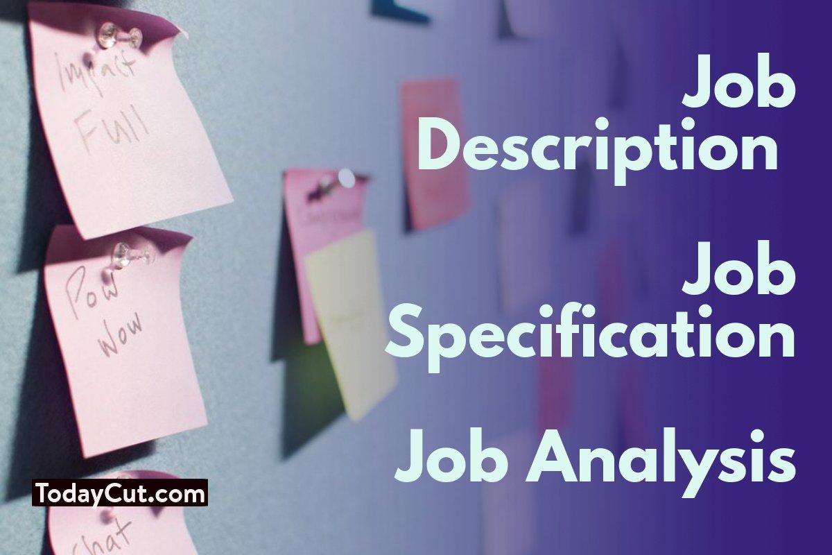 The Difference Job Description Vs Job Specification Vs
