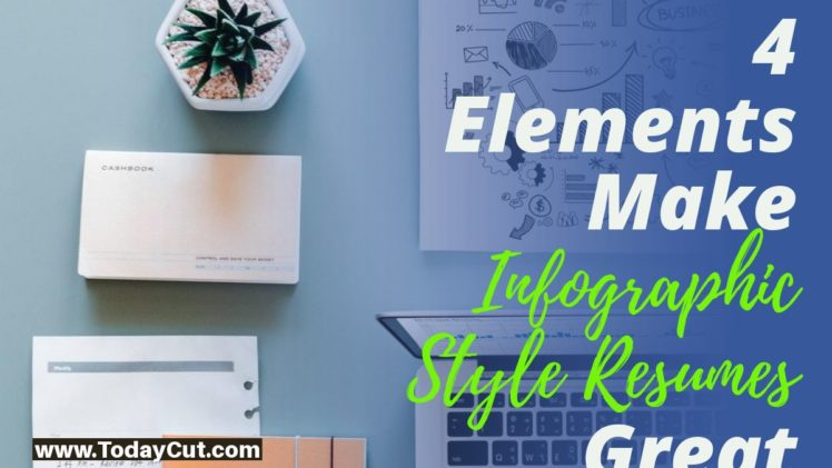 Elements of Infographic Style Resumes