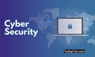 Reasons To Specialize In Cyber Security