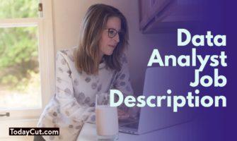 Data Analyst Job Description Sample